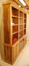 Collector's Bookcase